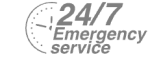 24/7 Emergency Service Pest Control in Bexley, DA5. Call Now! 020 8166 9746